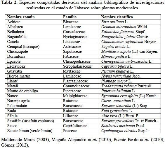 Hierbas medicinales con nombre y para que sirven buscar for Nombres d plantas ornamentales