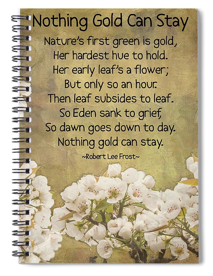 """This 6"""" x 8"""" spiral notebook features the artwork """"Nothing Gold Can Stay"""" by Leslie Montgomery on the cover and includes 120 lined pages for your notes and greatest thoughts."""