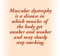The Meaning of Muscular Dystrophy