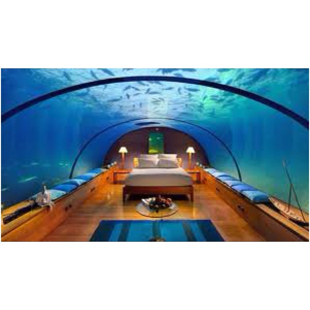 Cool hotel rooms places i d like to go pinterest for Fish hotel tank