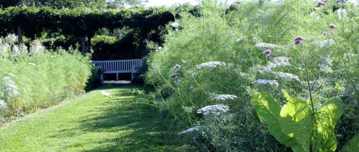 Homepage - Meadowburn Farm, new Jersey