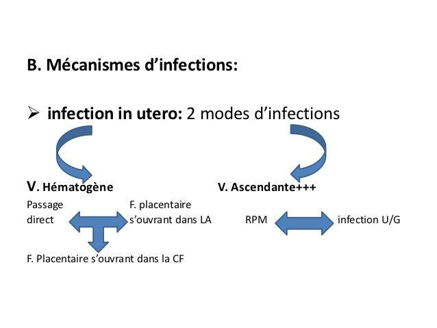 B. Mécanismes d'infections: infection in utero: 2 modes d'infectionsV. Hématogène                             V. Ascendan...