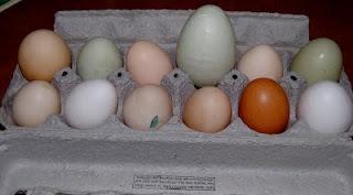 A Good EggC Mon Join, Blog C Mon