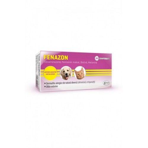 Fenazon 10x10 cp