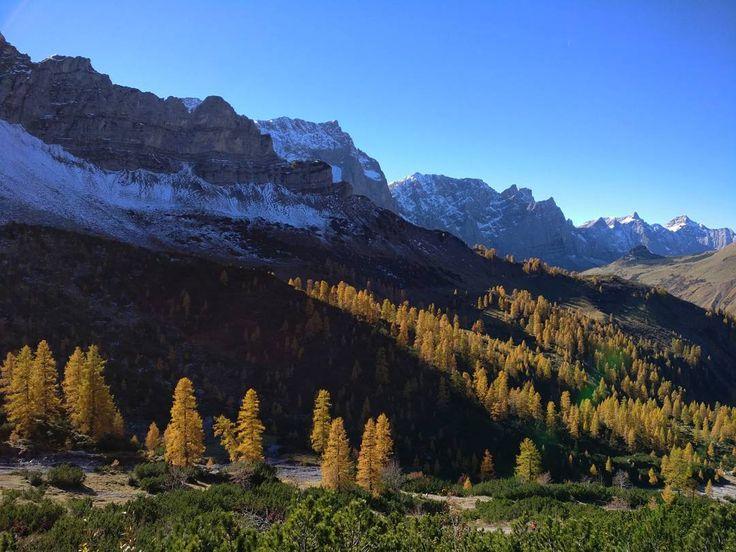 sometimes autumn sometimes winter  . #natureknowsbest#tirol#visittirol #karwendel #hiking #instanature #naturephotography #naszlaku #wandern #terazwgórach #awww #alpakamybags #fairytale