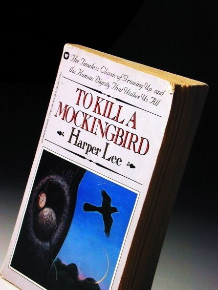 To Kill a Mockingbird by Harper Lee | 23 Books You Didn't Read In High School But Actually Should
