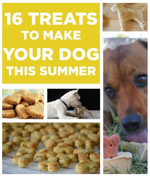16 Treats You Should Make For Your Dog This Summer Everyone's BFF deserves some homemade goodies every now and then! Some of these treats...