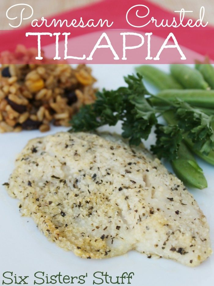 Parmesan crusted tilapia receta mariscos reci n for Comida para tilapia