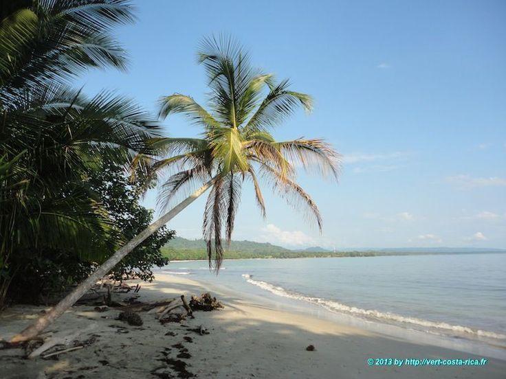 Cliquez ici pour découvrir les grandes plages de Cahuita au Costa Rica, Playa Negra, Playa Blanca et Playa Vargas. Cahuita vous offre des plages paradisiaques !