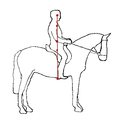 English Riding Position Diagram I Needed This In Hand Today