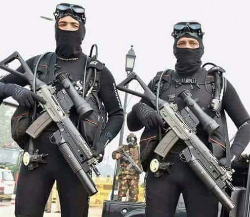 India's National Security Guard (NSG Black Cat) Commando combat divers with SIG-551 with 30mm UBGLs mounted. [506440]