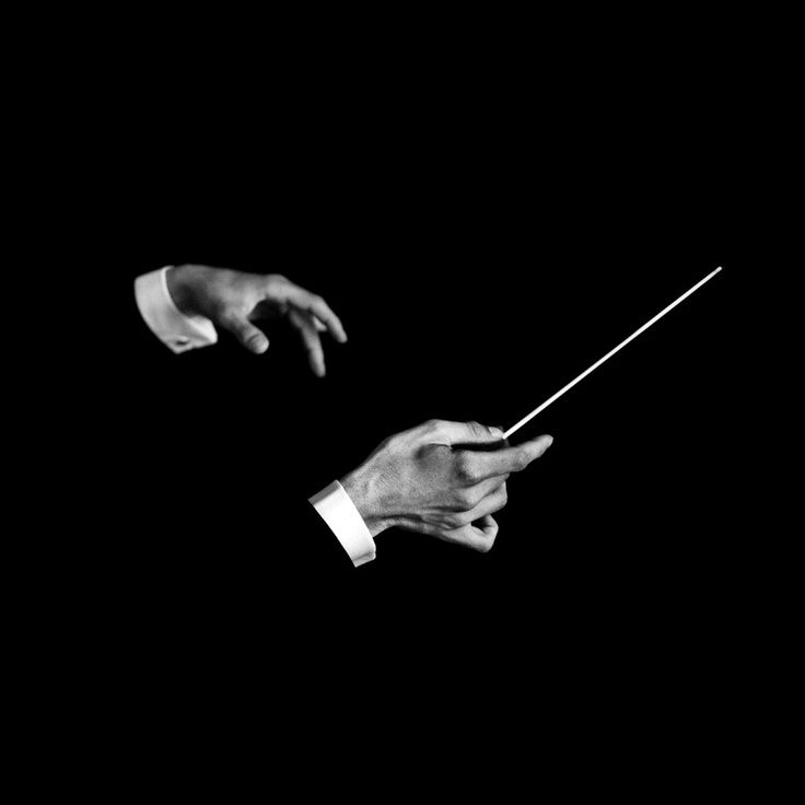 Conductor of an orchestra.                                                                                                                                                                                 More