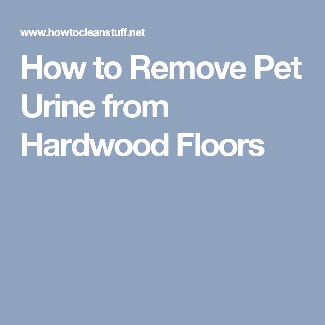 How to Remove Pet Urine from Hardwood Floors