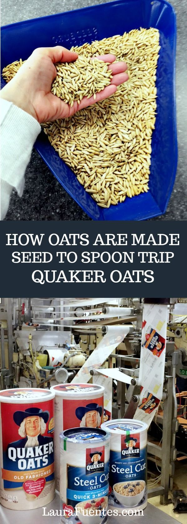 Passion and focus on making quality oats are a few of the things I learned from @Quaker in Iowa.  #ad #SeedtoSpoon
