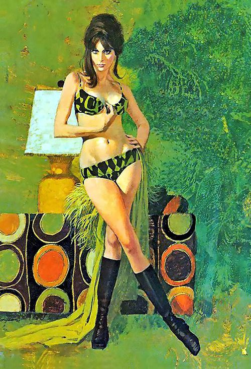 • Vinyl Art • ⋅ Untitled ⋅ artist: Robert McGinnis