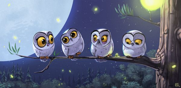 Owls by Biboun - Fossard Christophe, via Behance