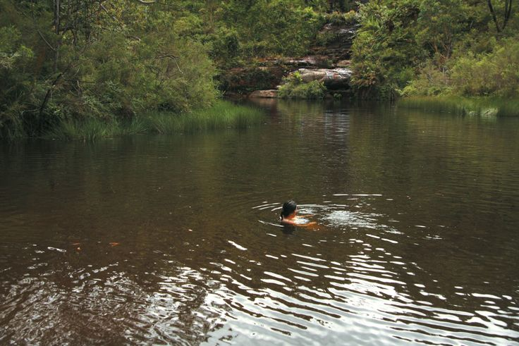 Ingar-Waterhole-camping-area,-Kerryn-Burgess-crop