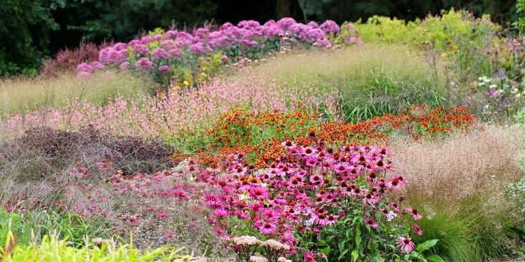 320 Best Images About Planting Design Piet Oudolf On