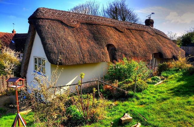 Tudor Cottages by Shertila Tony, via Flickr