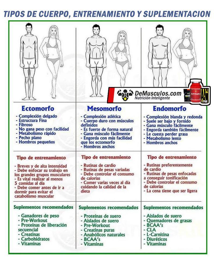 Tipos de cuerpo. Suplementación y ejercicios. Solo en www.demusculos.com