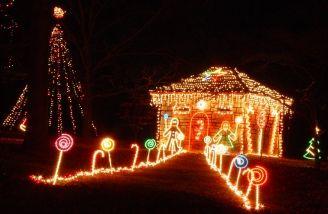 Tilles Park Christmas Lights