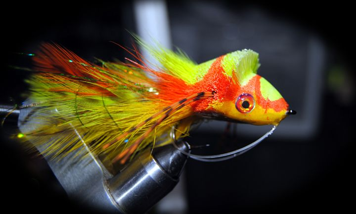 1000 Images About Bass Flies On Pinterest Fly Tying