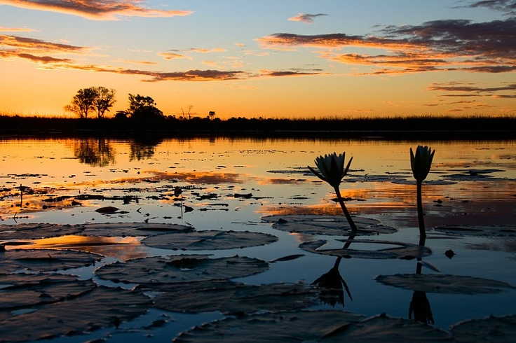 Botswana-ever since reading the #1 Ladies Detective Agency books, I am enchanted.