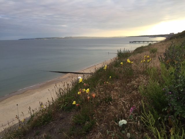 Lucky to work in such a beautiful location #bournemouth #southbourne #boscombe