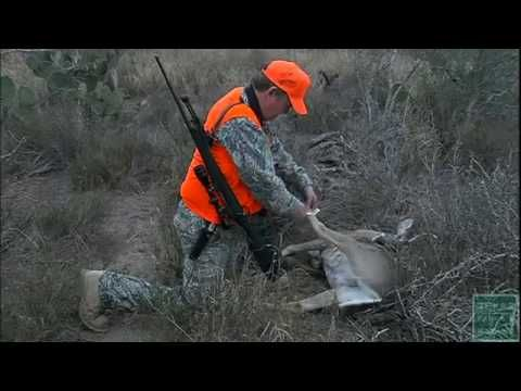 Avoid these Common Deer Season Hunting Violations in Texas