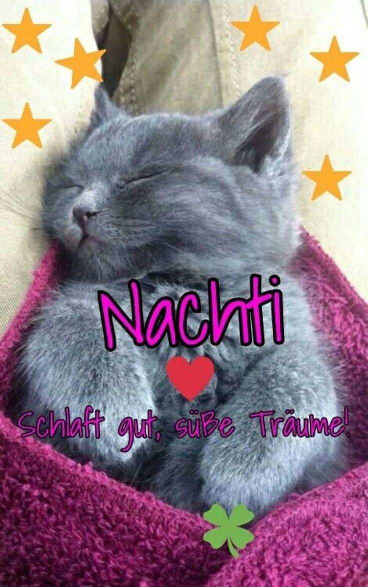 Gute Nacht bild 409 – GBPicsBilder.com