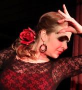 Flamenco  Photo: Kozár Edit