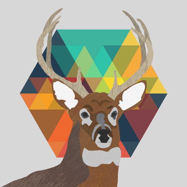 Deer by Luke Sohl, via Behance