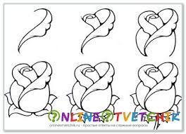 Картинки по запросу как нарисовать букет хризантем