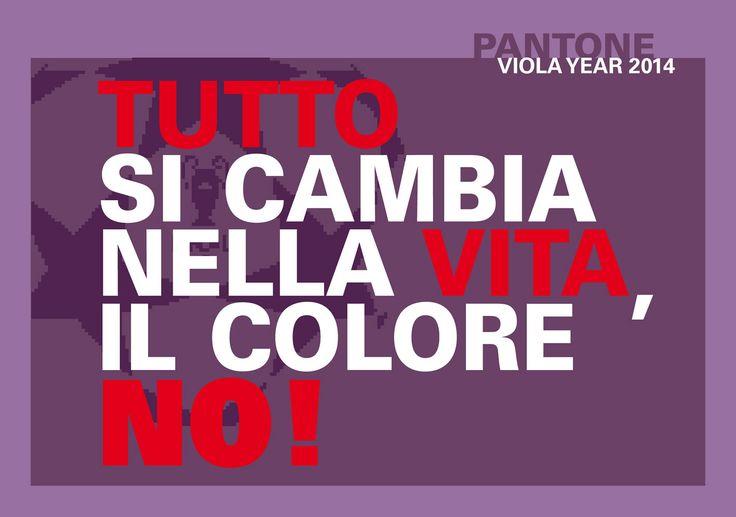 Il mio motto Tutto si cambia nella vita il colore no! Forza VIOLA!