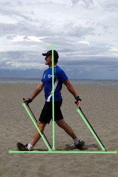 Nordic Walking motion