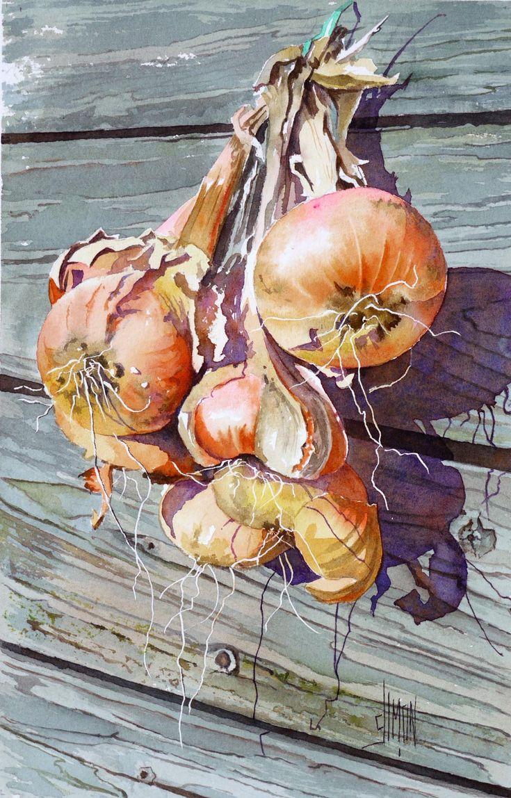 """Oignons"" - Joel Simon, watercolor {step-by-step demonstration of onions still-life food painting} joel-simon.fr"