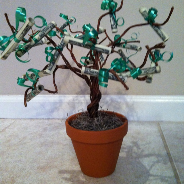 10 best money tree ideas images on pinterest money trees gift here is a cute gift idea i did for a christmas gift swap money tree lets just say it was wanted negle Choice Image