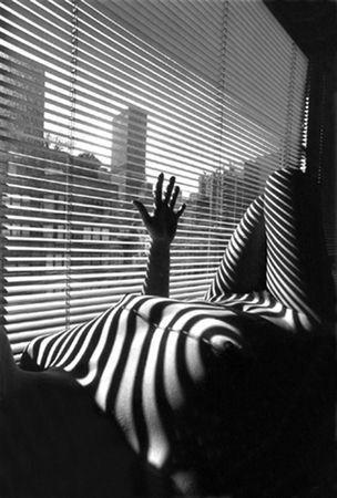 Lucien Clergue - Nude Zebra 1