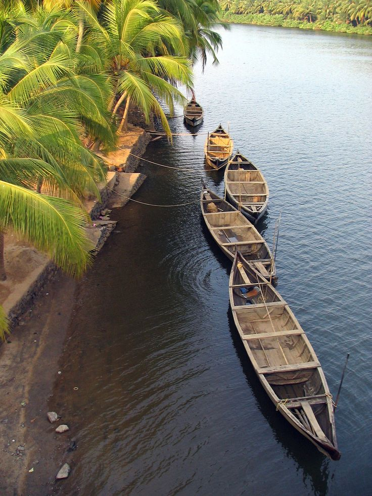 Thonikal (Boats) near the Kadavu Resort, Kozhikode, #Kerala