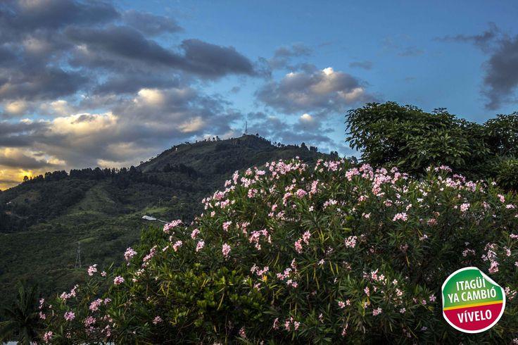 Pico el manzanillo de Itagüí