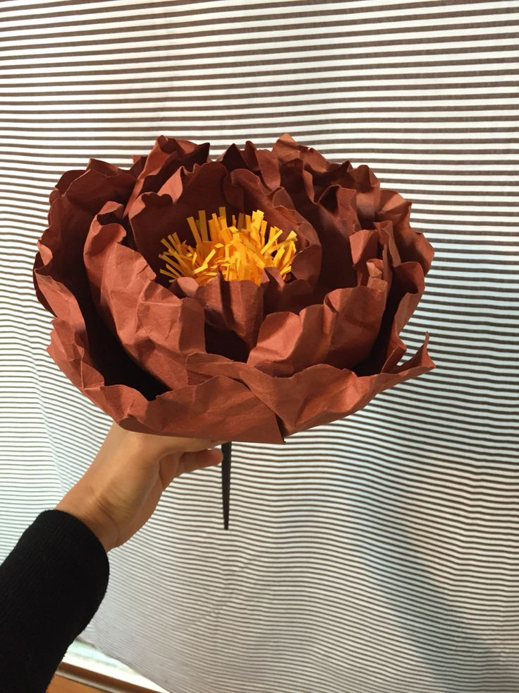 #Giant#Paper#flower By hong.1