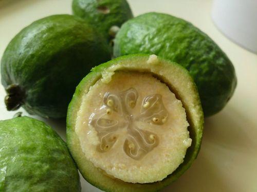 Существует в природе фейхоа. Что это за плод? Ягода или фрукт? Каковы полезные свойства фейхоа? Кому стоит ограничить ее употребление? Как ее едят и готовят?  http://www.spelo-zrelo.ru/poleznoe/svoistva/chem-polezna-fejhoa/