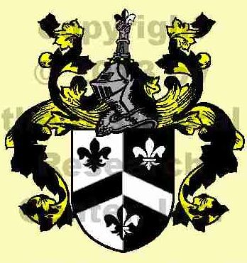 """Nelson Coat of Arms and History : The English surname Nelson is patronymic in origin, being one of those names derived from the first name of a father. In this case it simply denotes """"son of Nell,"""" from the Old Irish personal name Nel or Niall, which is derived from the Gaelic word """"nia,"""" meaning """"champion."""" This name was carried to Iceland by the Scandanavians as Njall, taken to Norway, then to France, and brought to England by the Normans in the wake of the Conquest (1066)."""