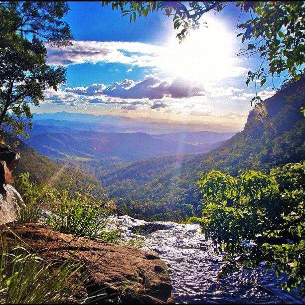 O'Reilly's Rainforest Retreat in Lamington National Park QLD #Australia
