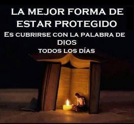 Salmo 119:114 Mi escondedero y mi escudo eres tú; En tu palabra he esperado…