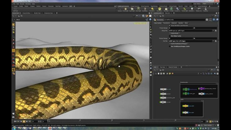Piranhaconda - Houdini SOPs Muscle and Wrinkles Tutorial