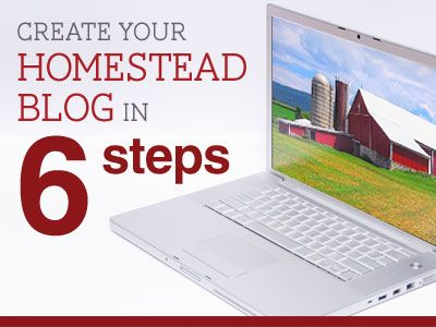 Create Your Homestead Blog - create your domain, build content, stay active online, share guest posts, set goals.
