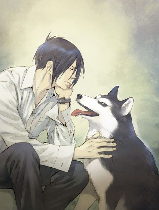 Must see Male Anime Adorable Dog - 442a4fb6884a86adc0ecf46ddba6a5b6--husky-dog-big-dogs  Graphic_271346  .jpg