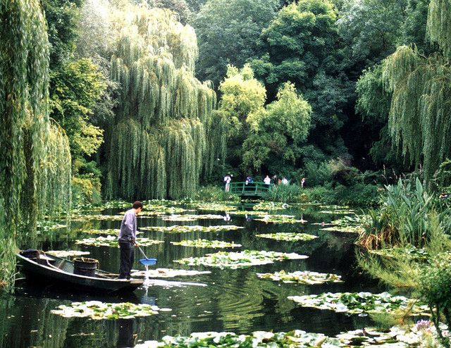 Claude Monet's water lily pond in Giverny, France.  The famous footbridge in the…