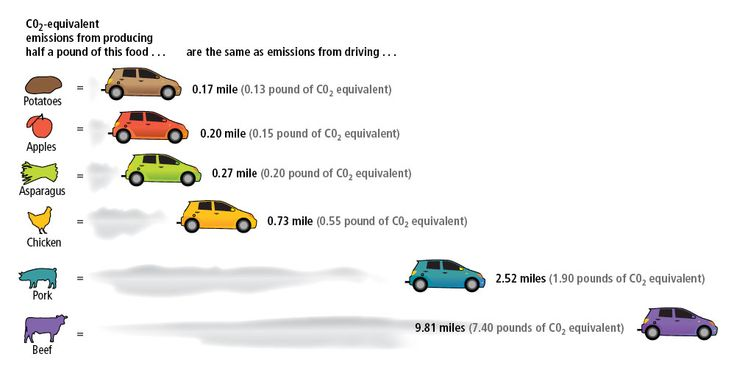 facts about cars causing air pollution